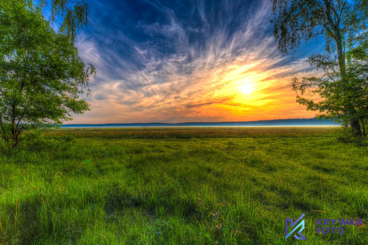 Przypadkowe zdjęcie pola o wschodzie słońca